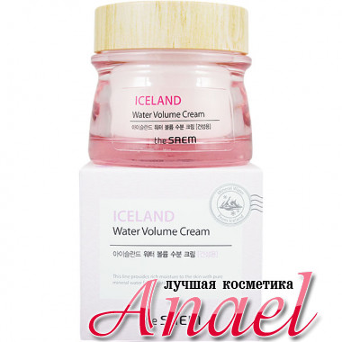 The Saem Увлажняющий питающий крем для сухой кожи Iceland Water Volume Cream (80 мл)